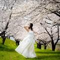 Photos: 春のポトレ