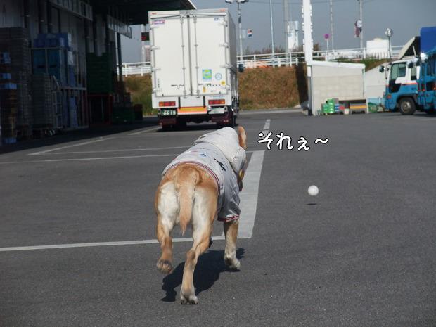 s-myu2008_1220(021)