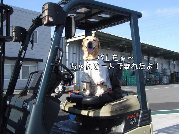 s-myu2008_1220(102)