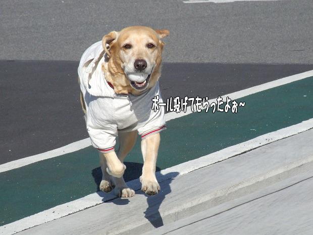 s-myu2008_1220(176)
