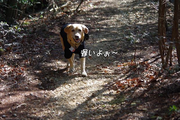 s-myu2009_0221(166)
