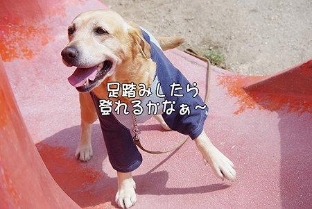 s-myu2009_0327(067)
