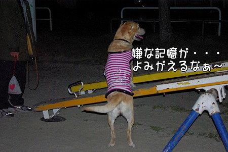 s-myu2009_0330(136)