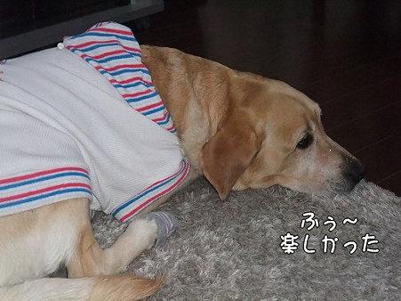s-myu2009_0504(085)