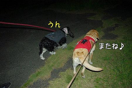 s-myu2009_0513(041)