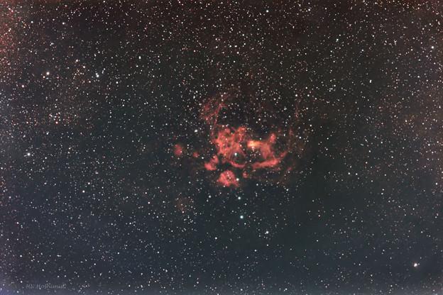 NGC6357彼岸花星雲