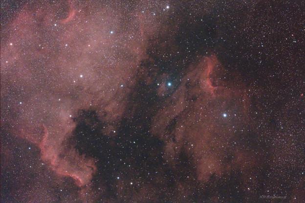 写真: ペリカン星雲