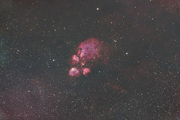 Photos: 猫の肉球星雲