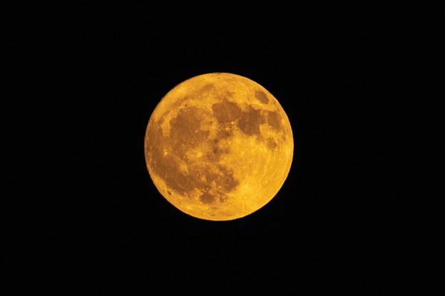 Photos: 満月15日・前日のお月様