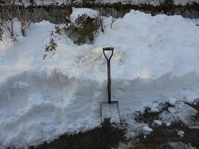 Photos: 2月8日「除雪」