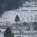 Photos: 2月15日「雪景色」