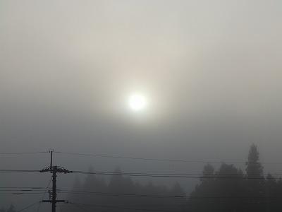 11月15日「昇る太陽」