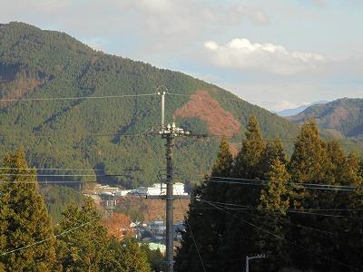 11月19日「秋の山」
