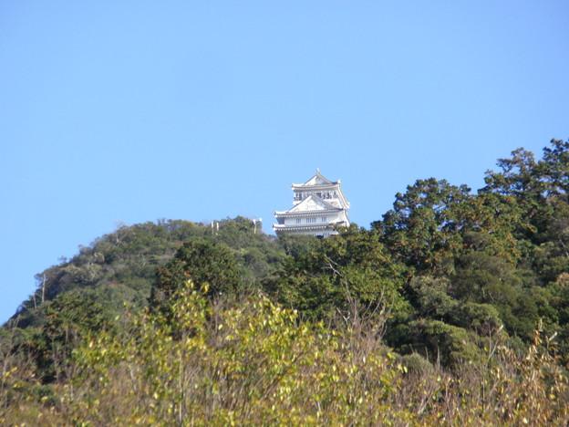 青空の日・岐阜城