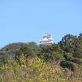 Photos: 青空の日・岐阜城