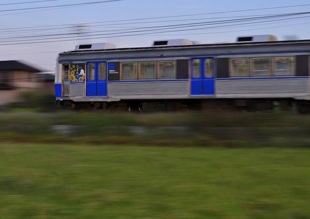 Photos: 流電車