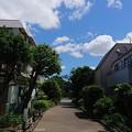 写真: DSC_0027.JPG