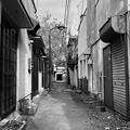 Photos: 繁華街