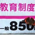 Photos: 一般850円