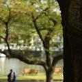 Photos: ミキ