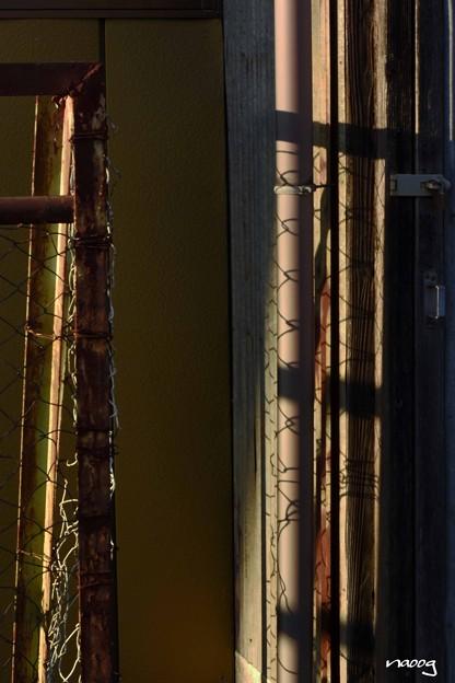フェンスの影