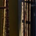 Photos: フェンスの影