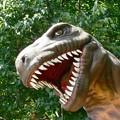 Photos: 茶臼山の恐竜たち