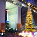 写真: タワーとツリーの競演♪