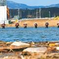 写真: <震災4年11カ月>気仙沼署が集中捜索-熊手で川底の堆積物をさらいながら、行方不明者の手掛かりを捜す署員たち