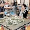 かき小屋、三陸の冬の味覚堪能 岩手・山田で営業始まる