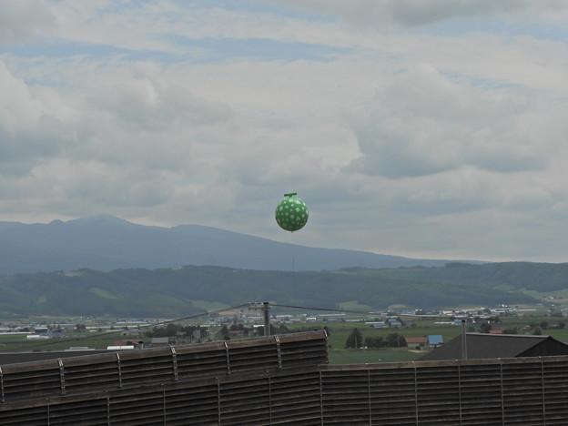 メロン型UFO!?