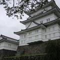 Photos: IMG_0061  小田原城(風魔忍者ベース基地)を右より望む