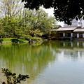 写真: 養浩館庭園