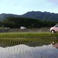写真: 水田に映る景色
