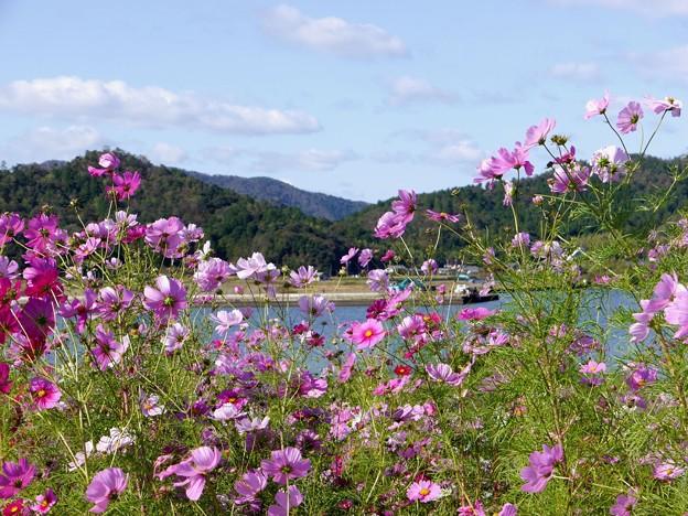 久々子湖畔