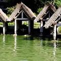 写真: 船小屋