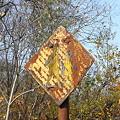 写真: 通学路標識