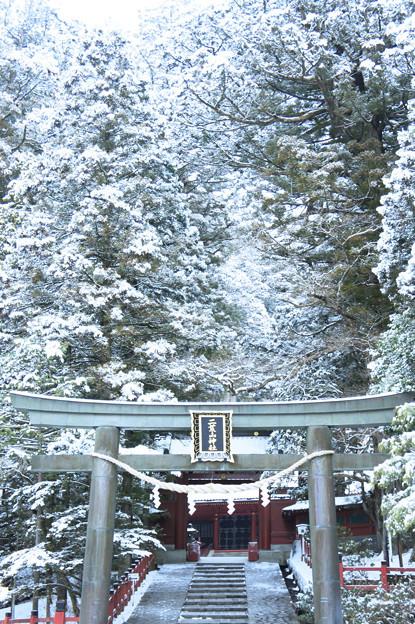 写真: 雪景色3