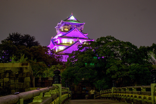 リレーフォーライフ大阪城ライトアップ