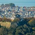 彦根城遠景