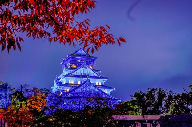 ブルーリボンライトアップ大阪城
