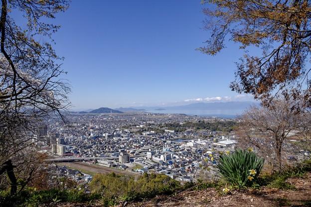 佐和山城から眺める彦根の街