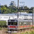 Photos: 伊賀のパワー