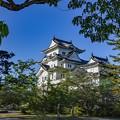 Photos: 白亜の古城