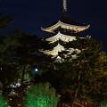 Photos: なら燈花会  興福寺五重塔