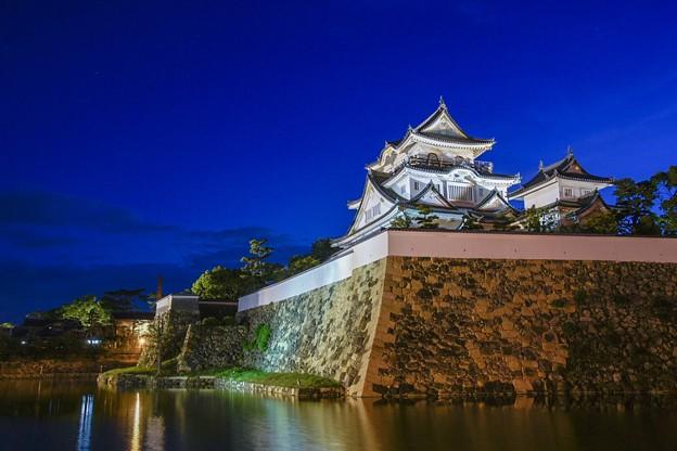 岸和田城  夜景