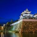 Photos: 岸和田城  夜景