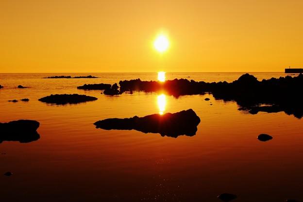 太陽が一杯・・・(*^_^*)