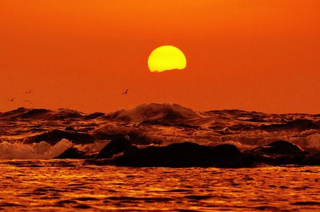 写真: 海抜50cm からの夕陽