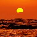 海抜50cm からの夕陽
